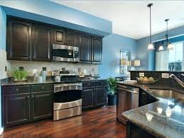 dark cabinets kitchen wall color comfy kitchen wall colors with dark brown cabinets in attractive home design furniture decorating with kitchen wall colors