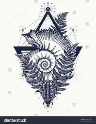 Nautilus Shell Prehistoric Tattoo Art Ancient Ammonite In The
