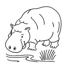 Small Picture Top 25 Free Printable Wild Animals Coloring Pages Online