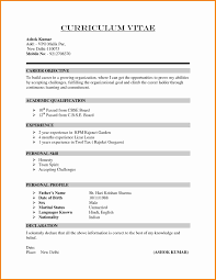 Resume Format 100 sample resume cv format Cv First Job 90