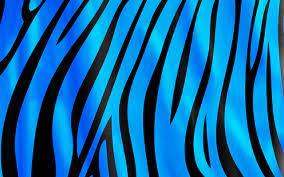 Blue Zebra Wallpaper on WallpaperSafari