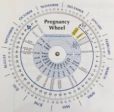 The Problem With Pregnancy Wheels Taking Charge Of Your