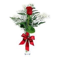 single red rose flower. Fine Rose Single Red Rose With Vase To Flower