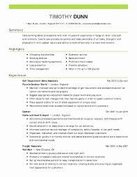 Sample Of Financial Analyst Resume Resume Work Template