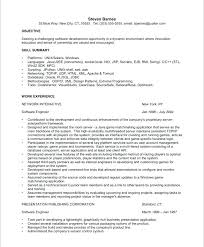 Database Developer Resume Template Magnificent Computer Engineer Resume Template Software Engineer Resume Objective