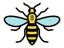 Bee of Manchester Logo | bite | Pinterest | Tattoos, Manchester and Bee