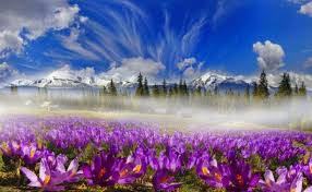 Comments on Spring in the mountain - Mountains Wallpaper ID 2356618 - Desktop Nexus Nature