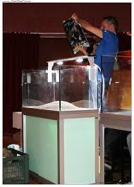 Reportage 5° corso di acquariologia 18 novembre 2012 danireef
