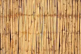 Entdecke aktuelle dachlatten angebote, indem du auf den prospekt klickst oder die suche nutzt. Schilfrohrmatten Befestigen Mit Ohne Zaun So Gelingt Es Hausgarten Net