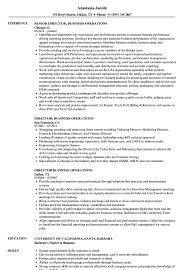 Sample Director Of Operations Resume Director Business Operations Resume Samples Velvet Jobs 25