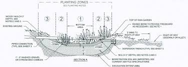 Small Picture Rain Gardens Regeneration Landscaping