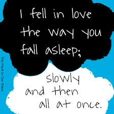The Fault In Our Stars Quotes Gorgeous The Fault In Our Stars Quotes Fell In Love