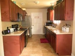 Small Galley Kitchen Design Kitchen 14 Nice Galley Kitchen Design Photos On Interior Decor