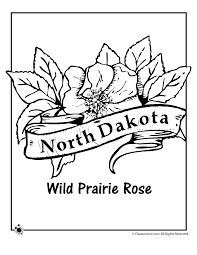 Small Picture North Dakota State Flower Coloring Page Woo Jr Kids Activities