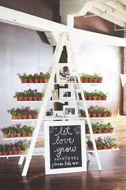 succulent wedding favors best photos   Favors, Weddings and Wedding