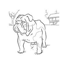 Small Picture Printable bulldog coloring page Free PDF download at http