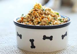 delicious and healthy dog food recipes