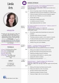 Resume New Style Professional Resume Templates