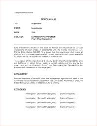 memorandum samplereport template document report template memorandum sample 5 jpg