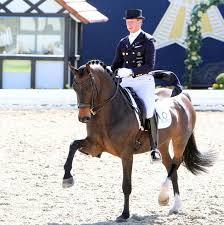 Patrik Kittel and Deja. © 2013 Ken Braddick/dressage-news.com   Dressage  horses, Dressage, Horses