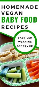 7 easy vegan baby food recipes for baby