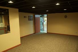 Painted Ceiling Tile Ideas Home Design Ideas - Exposed basement ceiling