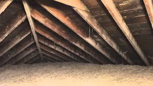 mold in attic. Contemporary Attic BeforeAfter Attic Mold Removal Frankfort IL Attic Remediation In C