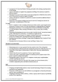 Accounting Resume Nz Sales Accountant Lewesmr