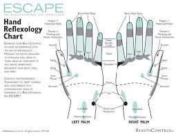 Printable Reflexology Charts Download Free In Pdf