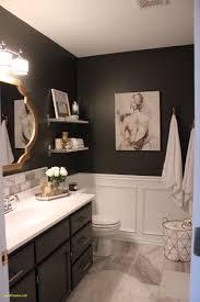 guest bathroom tile ideas. Guest Bathroom Ideas Pinterest Fresh Master Tile Dark Walls Pinteres