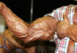 Image result for muscle pump vascularity