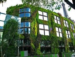 vertical garden design ideas garden