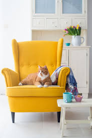 Yellow Chairs For Living Room 25 Best Ideas About Yellow Chairs On Pinterest Yellow Dining
