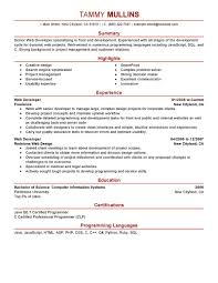 computers technology resume examples computers technology web developer resume example