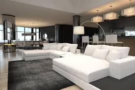 Black and white furnished modern living room