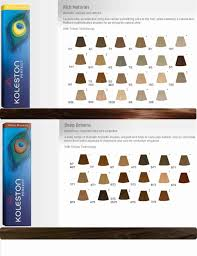 color level chart wella hair colour chart the big river