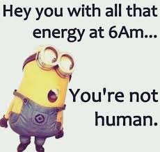 A Funny Good Morning Quote Best of Top 24 Funny Good Morning Quotes Pinterest Funny Minion Minion