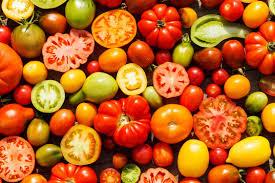 Blue Flame Kitchen Edmonton Tomato Extravaganza Edmonton Horticultural Society