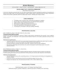 Real Estate Marketing Plan Delectable Commercial Real Estate Marketing Plan Template Resumes Campaign