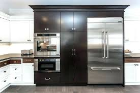 unique kitchen cabinet trends color captivating fresh for decorators wisdom handle and w cabinets 2017 promotion kitchen trend shallow cabinets 2017