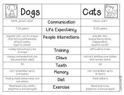 best compare contrast images compare and compare and contrast dogs and cats