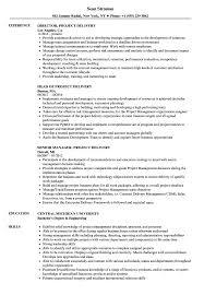 Project Delivery Resume Samples Velvet Jobs