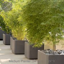 large modern planters  gardens and landscapings decoration