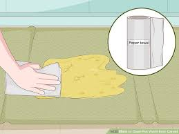 image titled clean pet vomit from carpet step 1