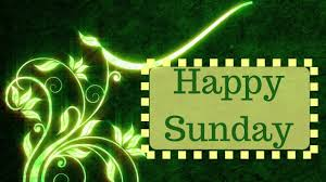 Happy Sunday Morning Quotes Beautiful Green Floral Design Animation
