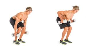 Dumbbell Exercises For Men Chart The Dumbbell Workout Plan To Build Muscle At Home Coach