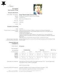 English Curriculum Vitae Example Curriculum Vitae English Example Download