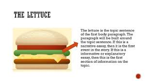 the hamburger essay outline 3