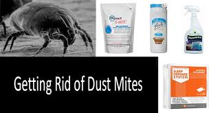 how to get rid of dust mites photo