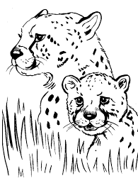 cheetah coloring pictures.  Coloring Cheetah Coloring Pages To Print For Pictures E